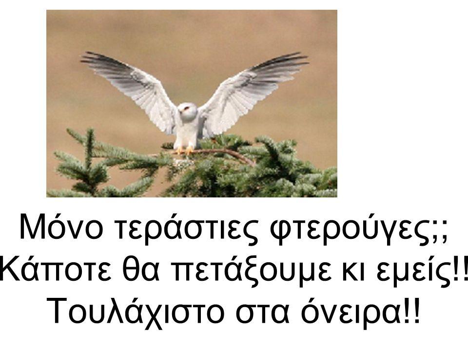 Μόνο τεράστιες φτερούγες;; Κάποτε θα πετάξουμε κι εμείς