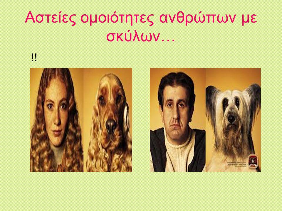 Αστείες ομοιότητες ανθρώπων με σκύλων…