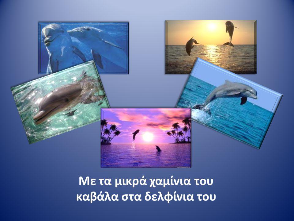 Με τα μικρά χαμίνια του καβάλα στα δελφίνια του