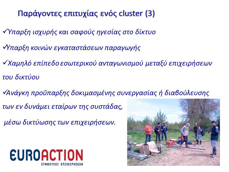 Παράγοντες επιτυχίας ενός cluster (3)