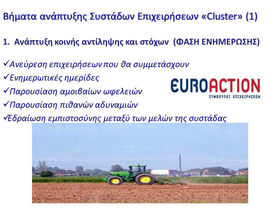 Βήματα ανάπτυξης Συστάδων Επιχειρήσεων «Cluster» (1)