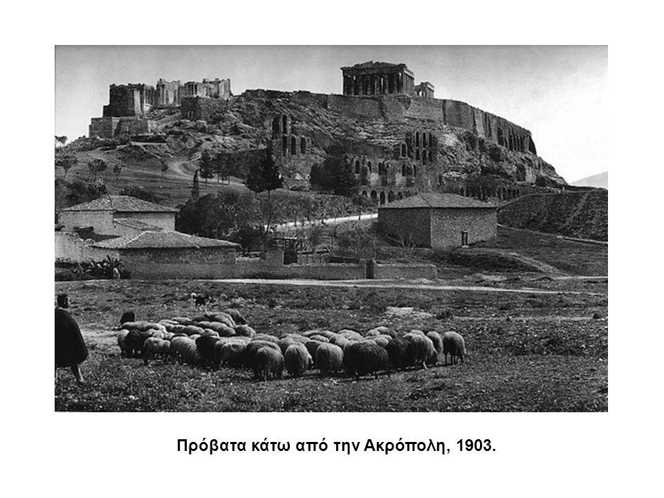 Πρόβατα κάτω από την Ακρόπολη, 1903.