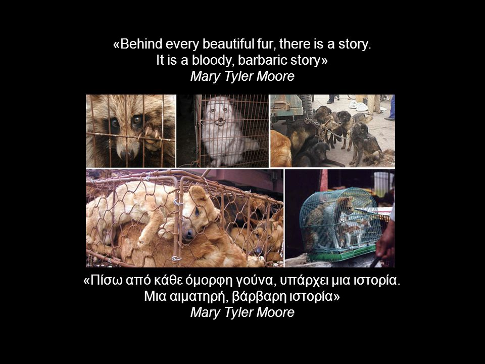 «Behind every beautiful fur, there is a story.