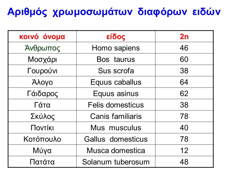 Αριθμός χρωμοσωμάτων διαφόρων ειδών
