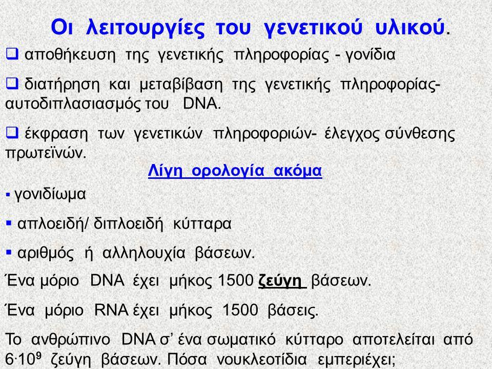 Οι λειτουργίες του γενετικού υλικού.