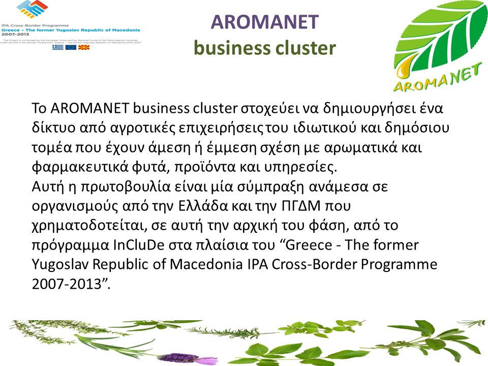 AROMANET business cluster