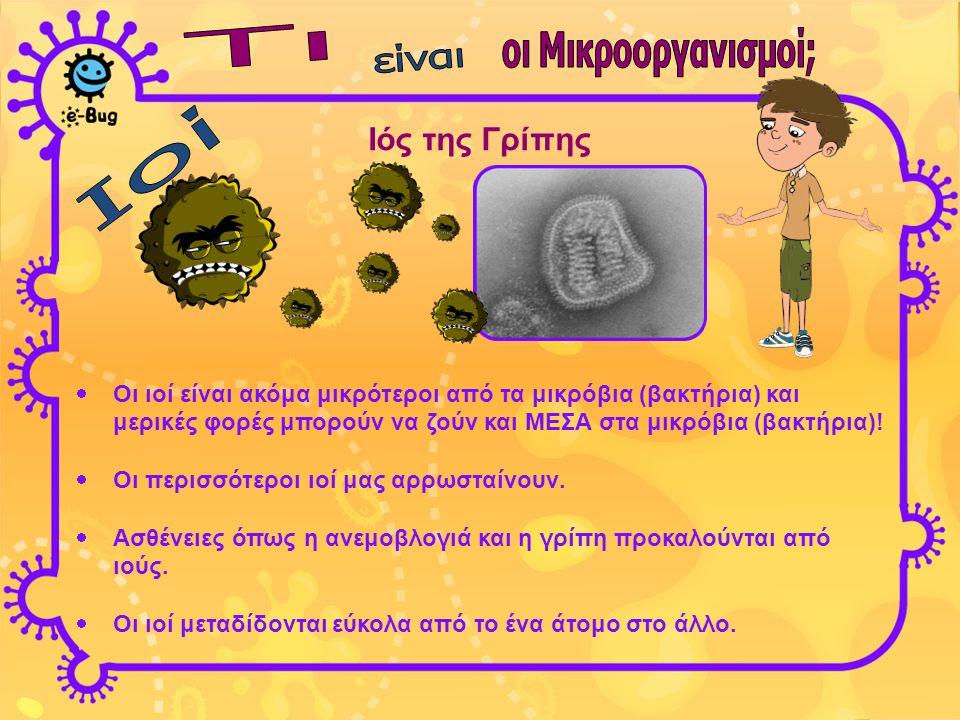 Ιός της Γρίπης Τι οι Μικροοργανισμοί; είναι Ιοί