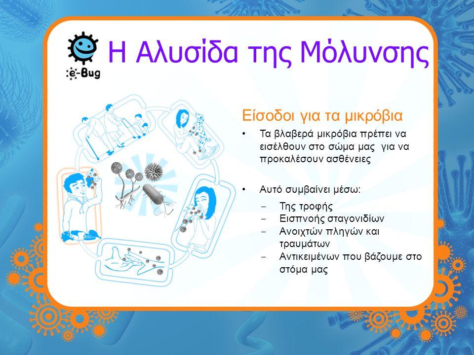 Η Αλυσίδα της Μόλυνσης Είσοδοι για τα μικρόβια