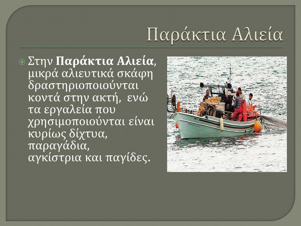 Παράκτια Αλιεία