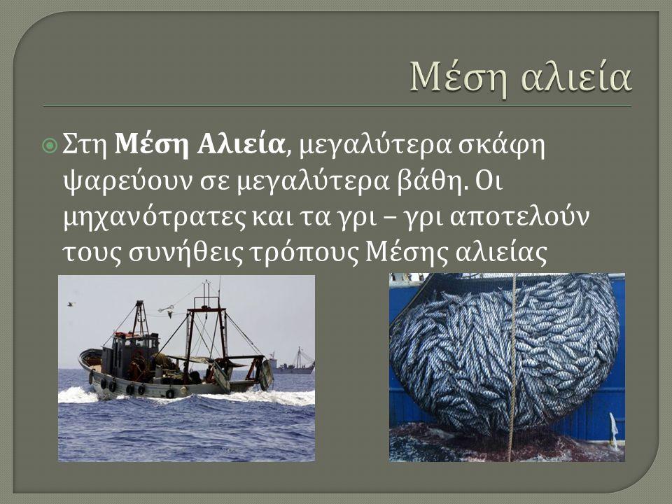 Μέση αλιεία