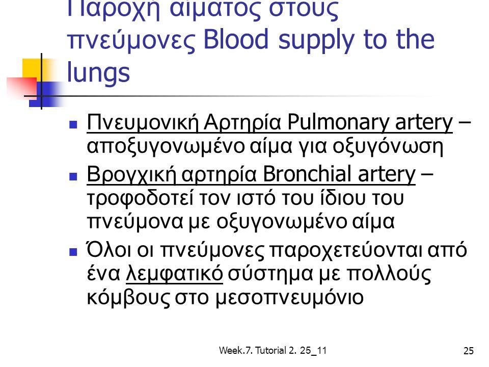 Παροχή αίματος στους πνεύμονες Blood supply to the lungs