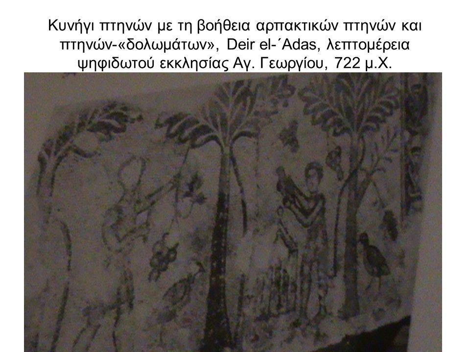 Κυνήγι πτηνών με τη βοήθεια αρπακτικών πτηνών και πτηνών-«δολωμάτων», Deir el-΄Adas, λεπτομέρεια ψηφιδωτού εκκλησίας Αγ.