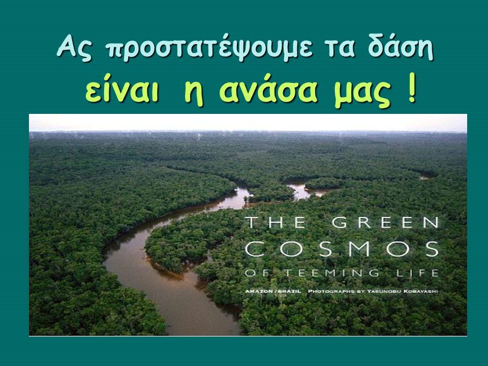 Ας προστατέψουμε τα δάση