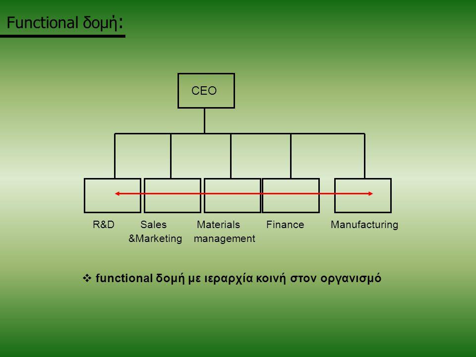 Functional δομή: CEO functional δομή με ιεραρχία κοινή στον οργανισμό