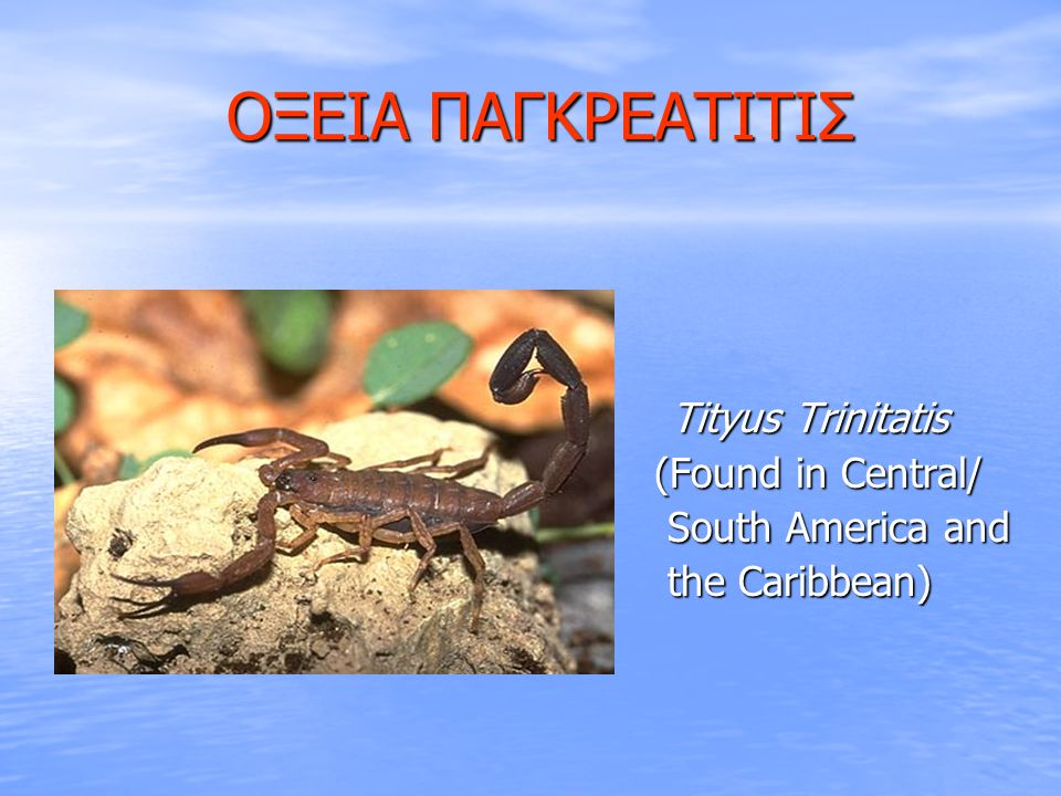 ΟΞΕΙΑ ΠΑΓΚΡΕΑΤΙΤΙΣ (Found in Central/ South America and the Caribbean)
