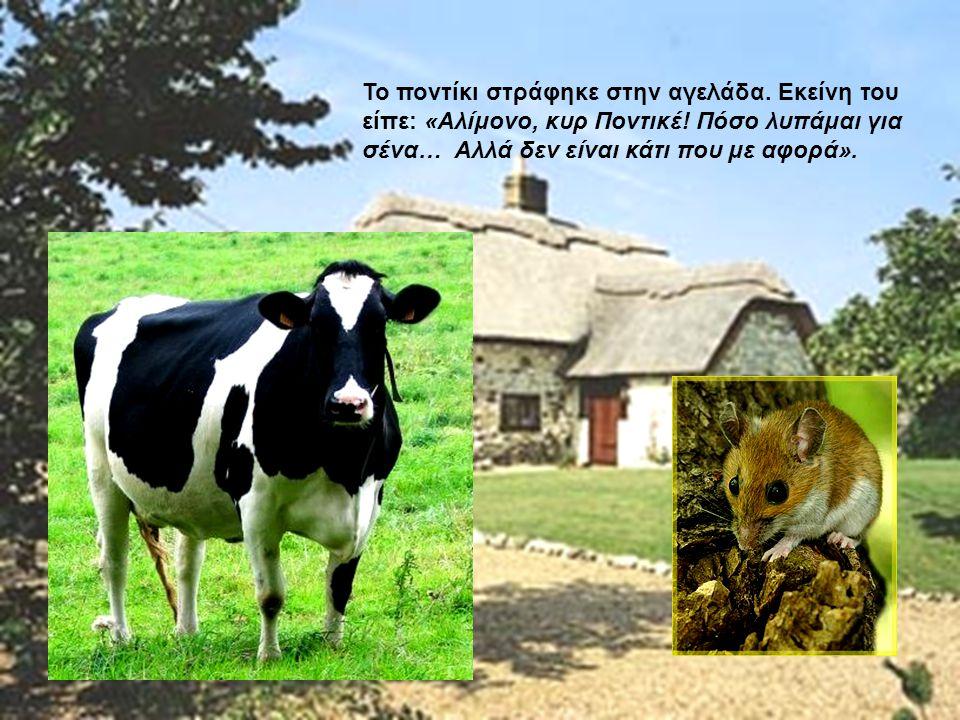 Το ποντίκι στράφηκε στην αγελάδα