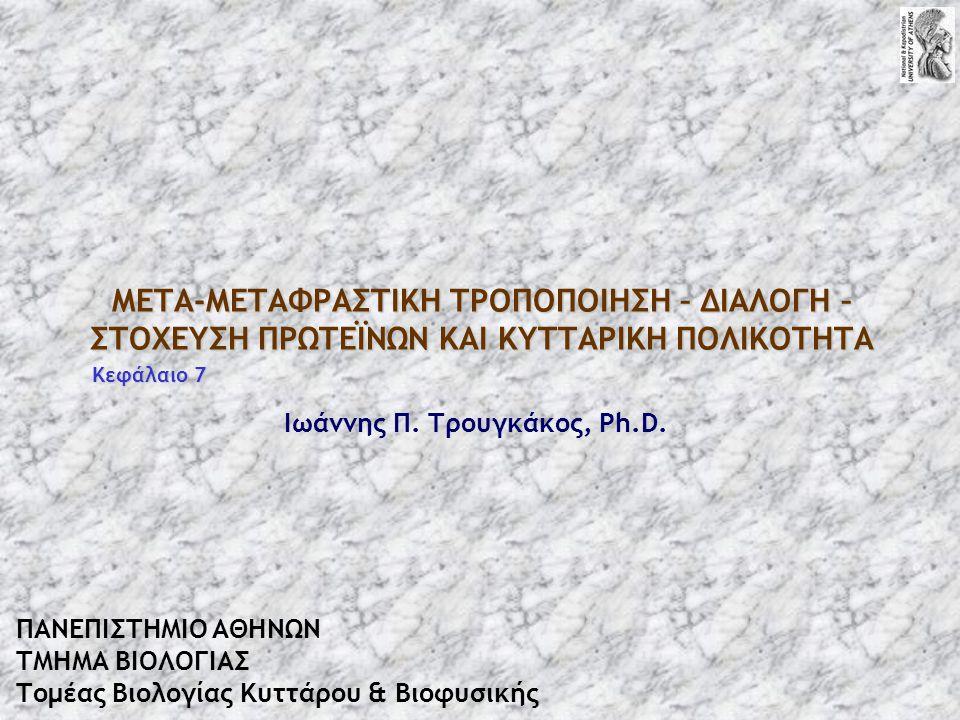 Ιωάννης Π. Τρουγκάκος, Ph.D.