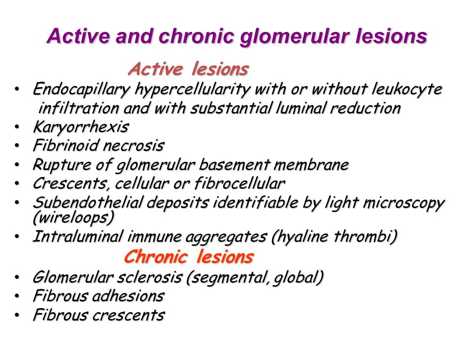 Active and chronic glomerular lesions