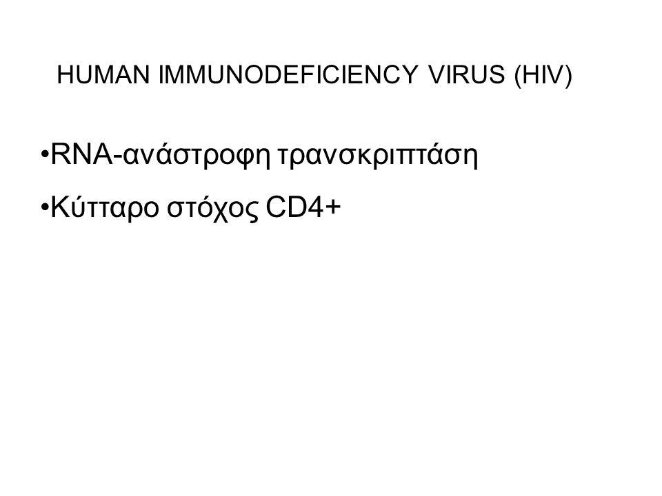 RNA-ανάστροφη τρανσκριπτάση Κύτταρο στόχος CD4+