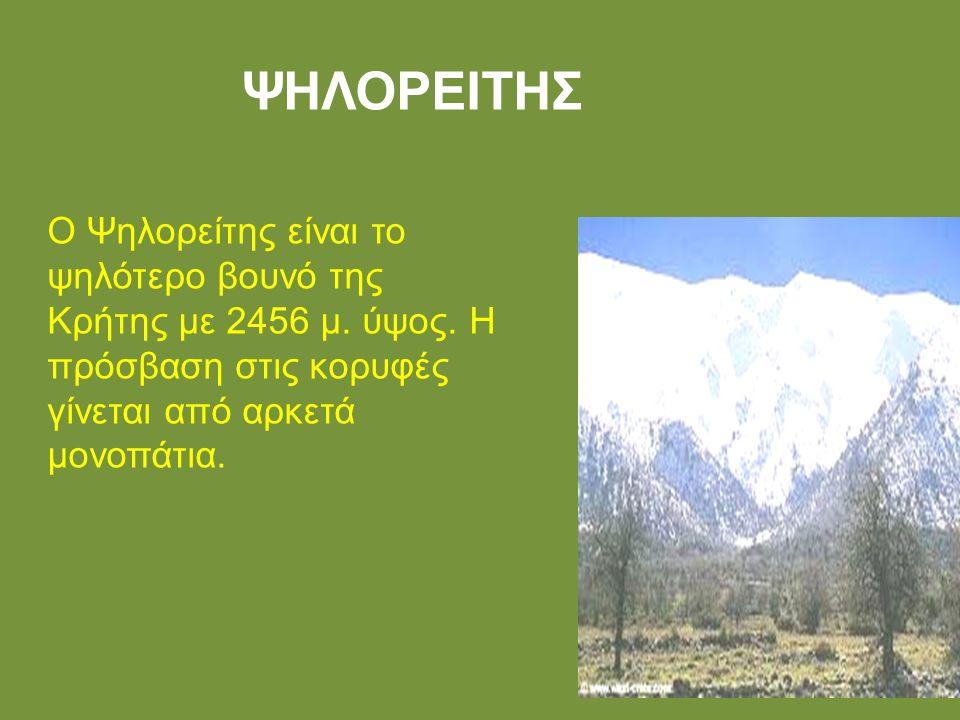ΨΗΛΟΡΕΙΤΗΣ Ο Ψηλορείτης είναι το ψηλότερο βουνό της Κρήτης με 2456 μ.