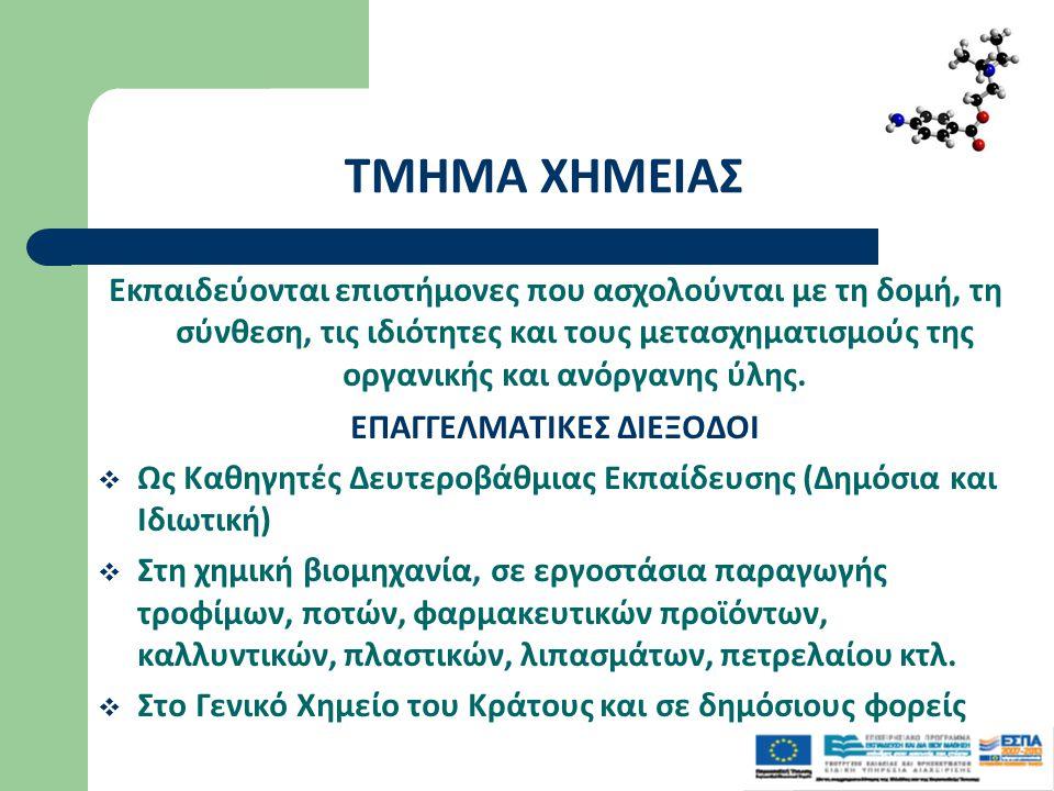 ΕΠΑΓΓΕΛΜΑΤΙΚΕΣ ΔΙΕΞΟΔΟΙ