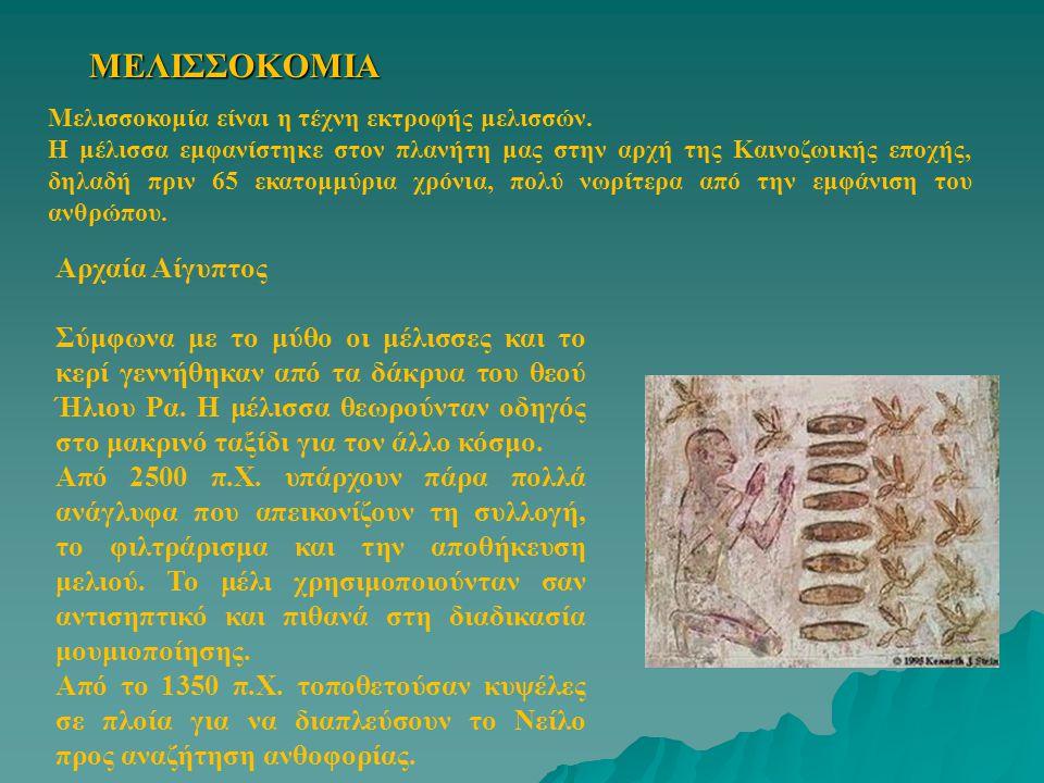 ΜΕΛΙΣΣΟΚΟΜΙΑ Αρχαία Αίγυπτος