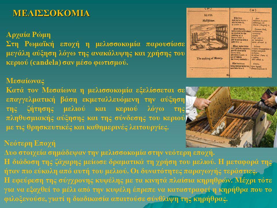 ΜΕΛΙΣΣΟΚΟΜΙΑ Αρχαία Ρώμη