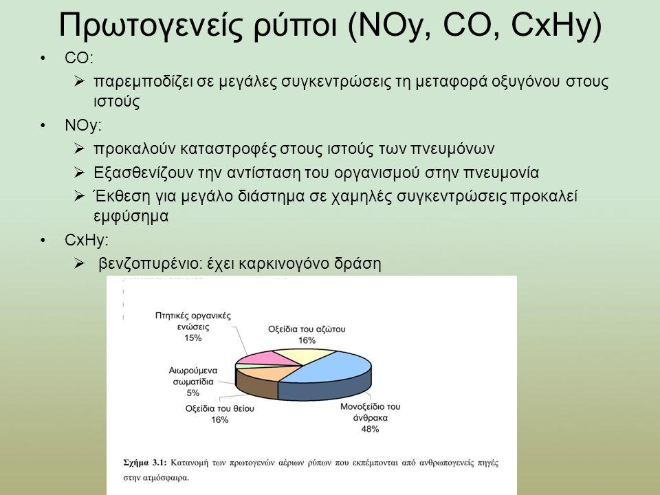 Πρωτογενείς ρύποι (ΝΟy, CO, CxHy)