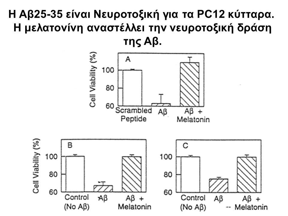 Η Αβ25-35 είναι Νευροτοξική για τα PC12 κύτταρα.