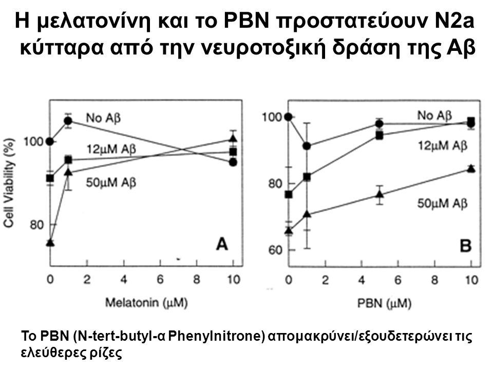 Η μελατονίνη και το PBN προστατεύουν N2a