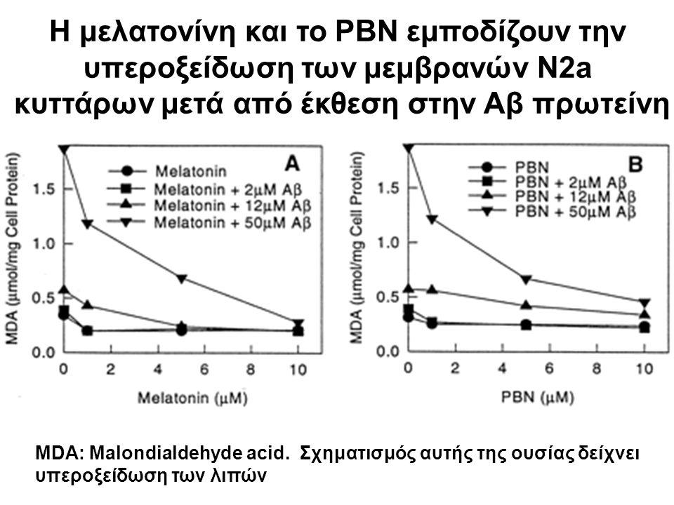 Η μελατονίνη και το PBN εμποδίζουν την υπεροξείδωση των μεμβρανών N2a