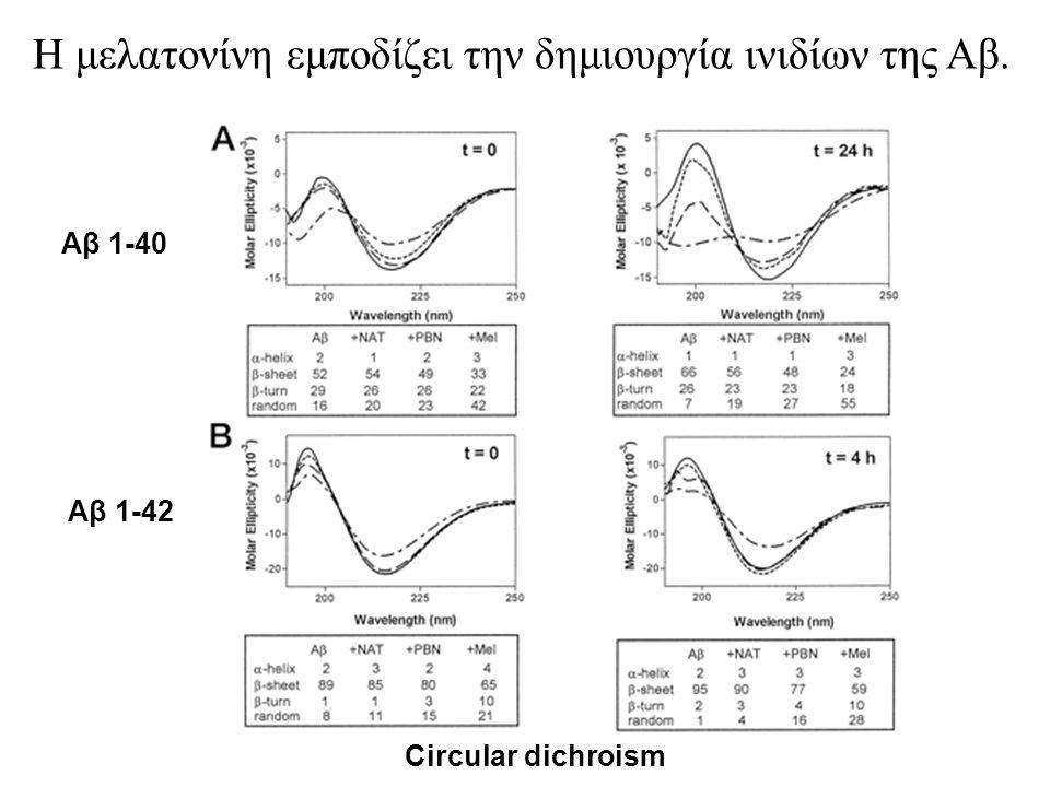 Η μελατονίνη εμποδίζει την δημιουργία ινιδίων της Αβ.