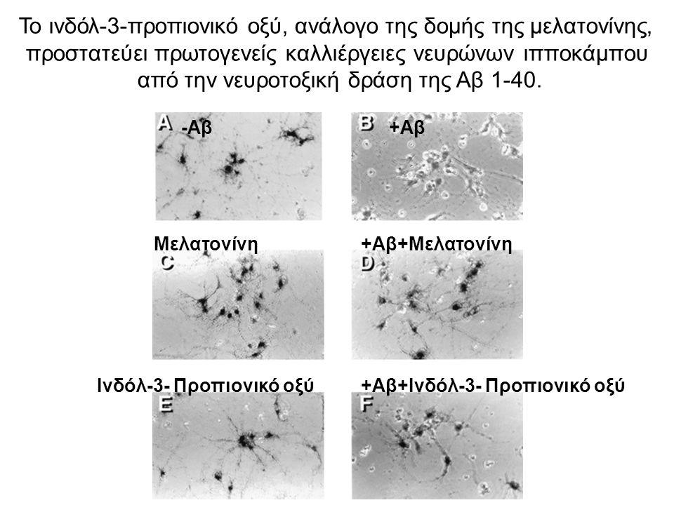 Το ινδόλ-3-προπιονικό οξύ, ανάλογο της δομής της μελατονίνης,