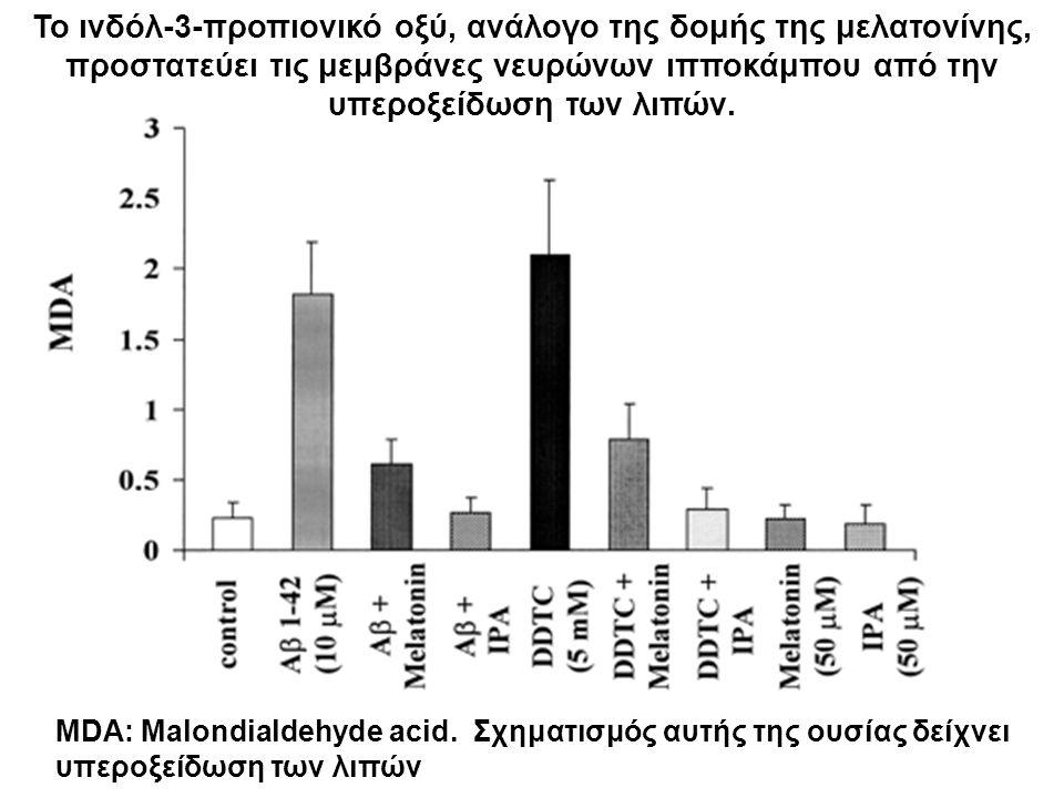 Το ινδόλ-3-προπιονικό οξύ, ανάλογο της δομής της μελατονίνης, προστατεύει τις μεμβράνες νευρώνων ιπποκάμπου από την υπεροξείδωση των λιπών.