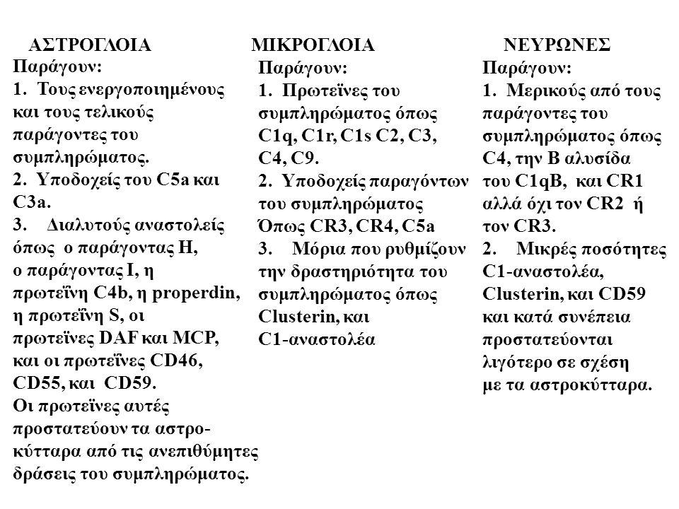 ΑΣΤΡΟΓΛΟΙΑ ΜΙΚΡΟΓΛΟΙΑ ΝΕΥΡΩΝΕΣ