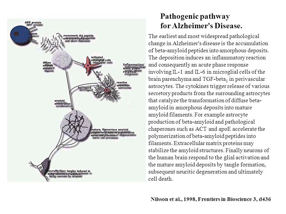 for Alzheimer s Disease.