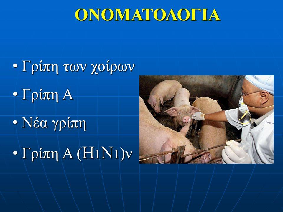 ΟΝΟΜΑΤΟΛΟΓΙΑ Γρίπη των χοίρων Γρίπη Α Νέα γρίπη Γρίπη Α (Η1Ν1)ν