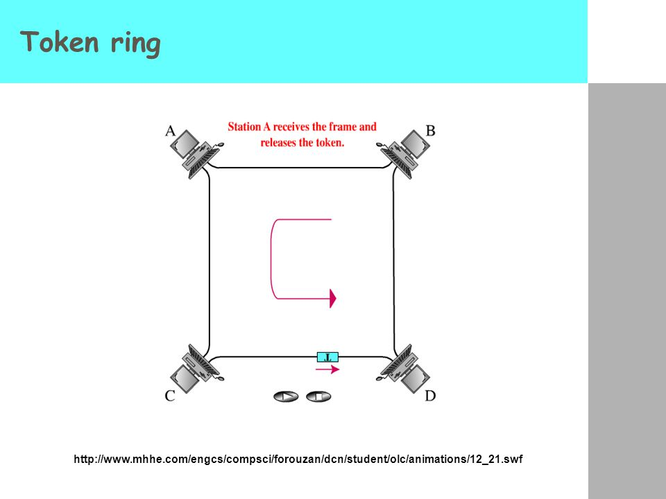 Token ring http://www.mhhe.com/engcs/compsci/forouzan/dcn/student/olc/animations/12_21.swf