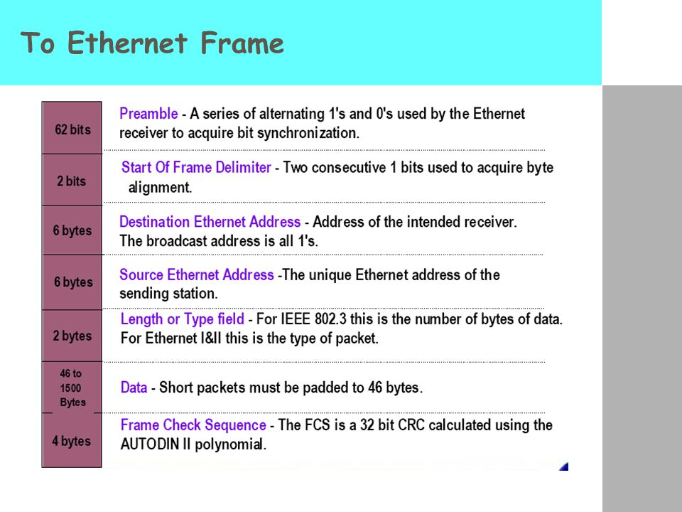 Το Ethernet Frame
