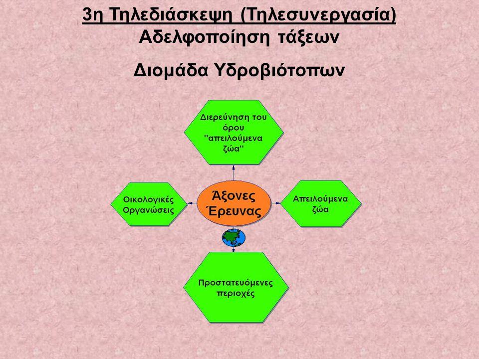 3η Τηλεδιάσκεψη (Τηλεσυνεργασία) Αδελφοποίηση τάξεων