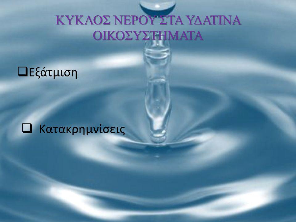 ΚΥΚΛΟΣ ΝΕΡΟΥ ΣΤΑ ΥΔΑΤΙΝΑ ΟΙΚΟΣΥΣΤΗΜΑΤΑ