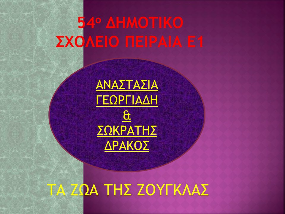 54ο ΔΗΜΟΤΙΚΟ ΣΧΟΛΕΙΟ ΠΕΙΡΑΙΑ E1