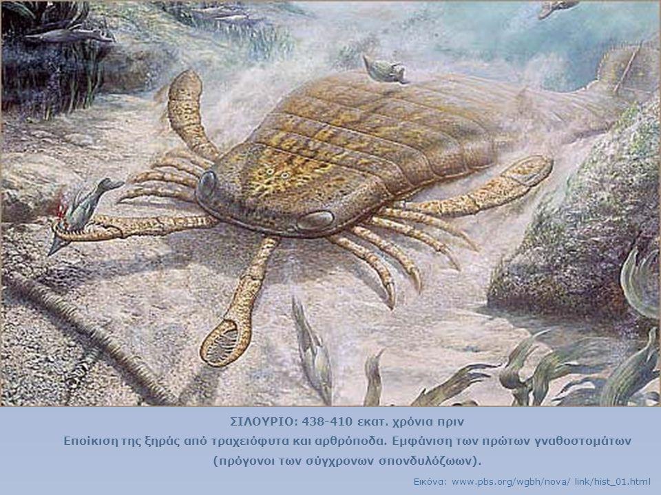 ΣΙΛΟΥΡΙΟ: 438-410 εκατ. χρόνια πριν