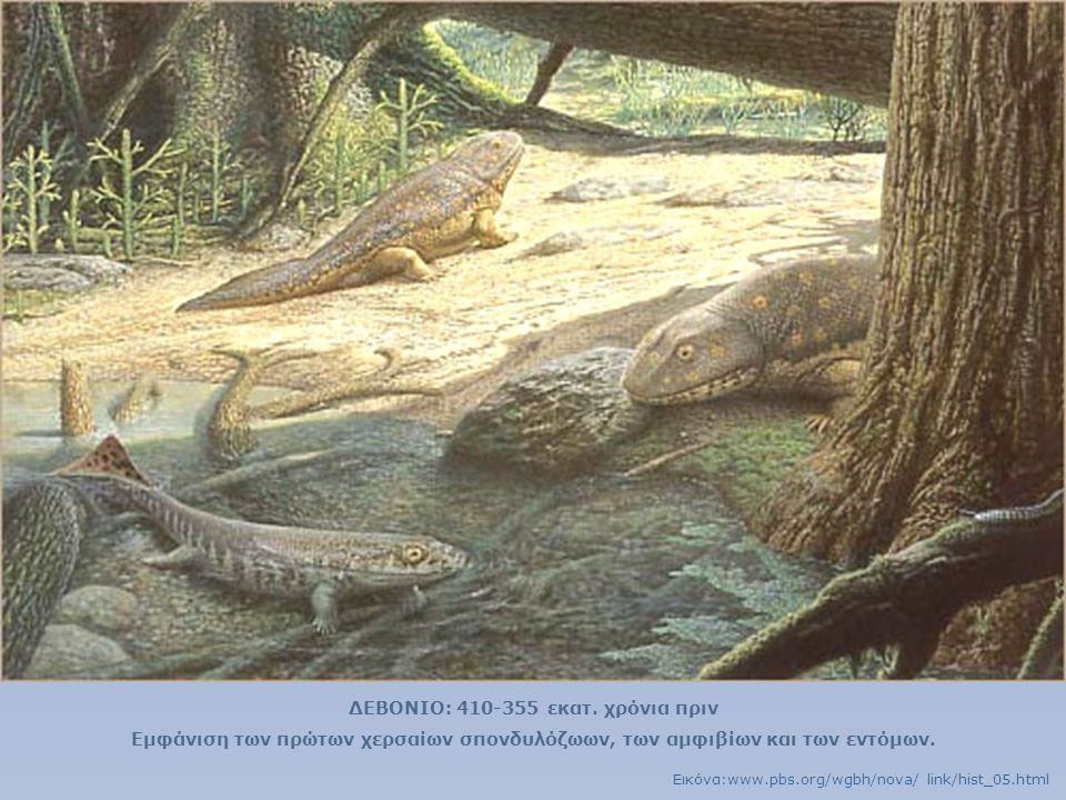 ΔΕΒΟΝΙΟ: 410-355 εκατ. χρόνια πριν