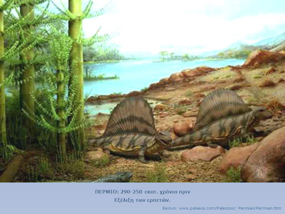 ΠΕΡΜΙΟ: 290-250 εκατ. χρόνια πριν
