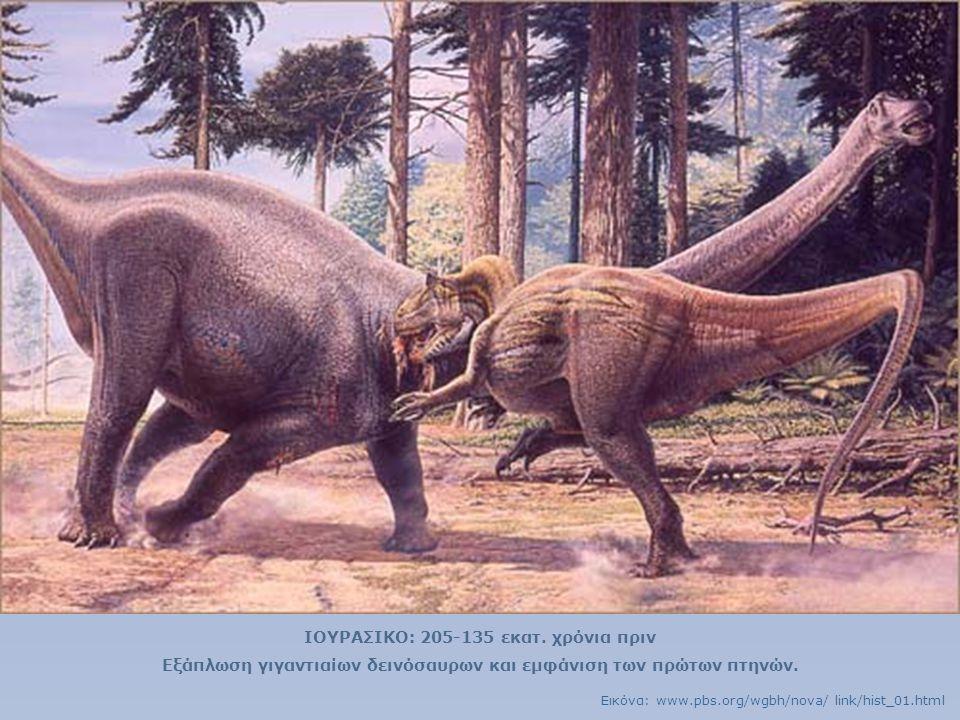 ΙΟΥΡΑΣΙΚΟ: 205-135 εκατ. χρόνια πριν