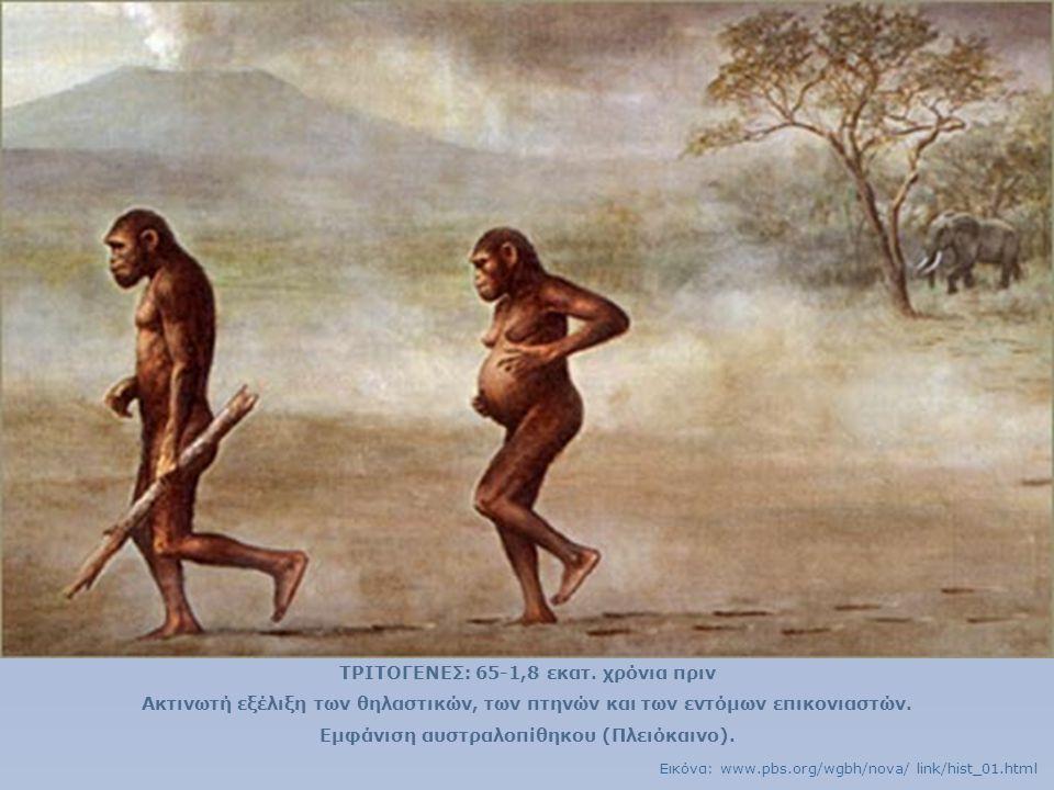 ΤΡΙΤΟΓΕΝΕΣ: 65-1,8 εκατ. χρόνια πριν