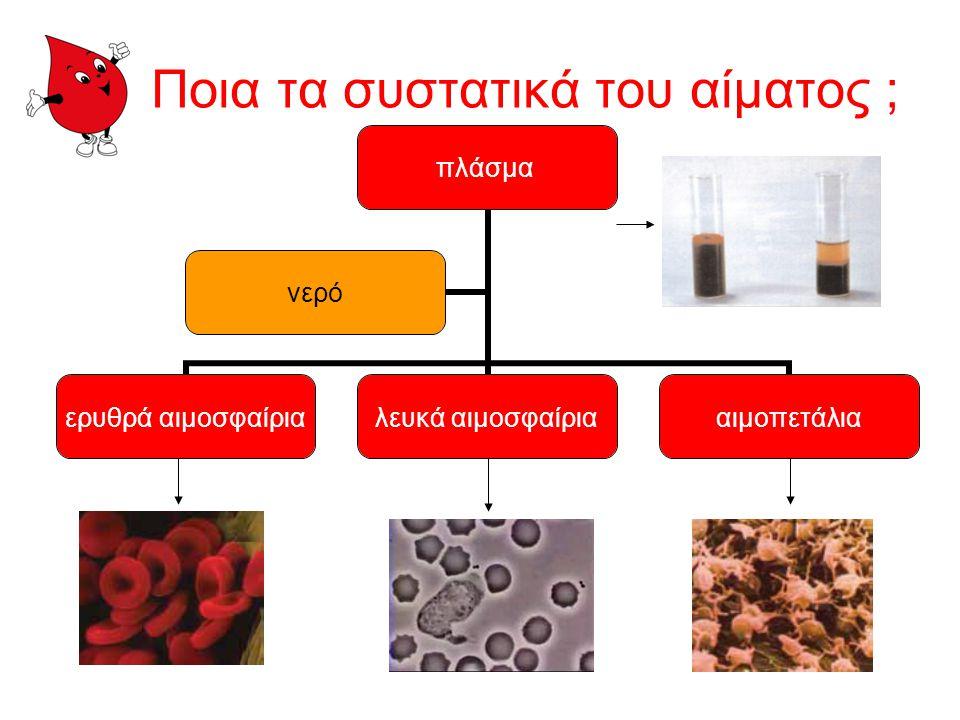Ποια τα συστατικά του αίματος ;