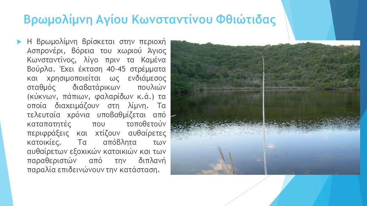 Βρωμολίμνη Αγίου Κωνσταντίνου Φθιώτιδας