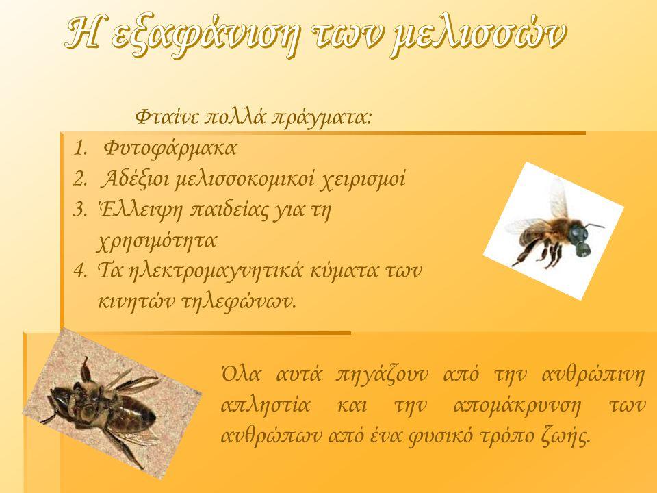 Η εξαφάνιση των μελισσών